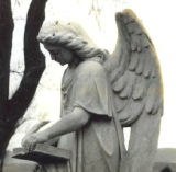 GeneSearch genealogy angel